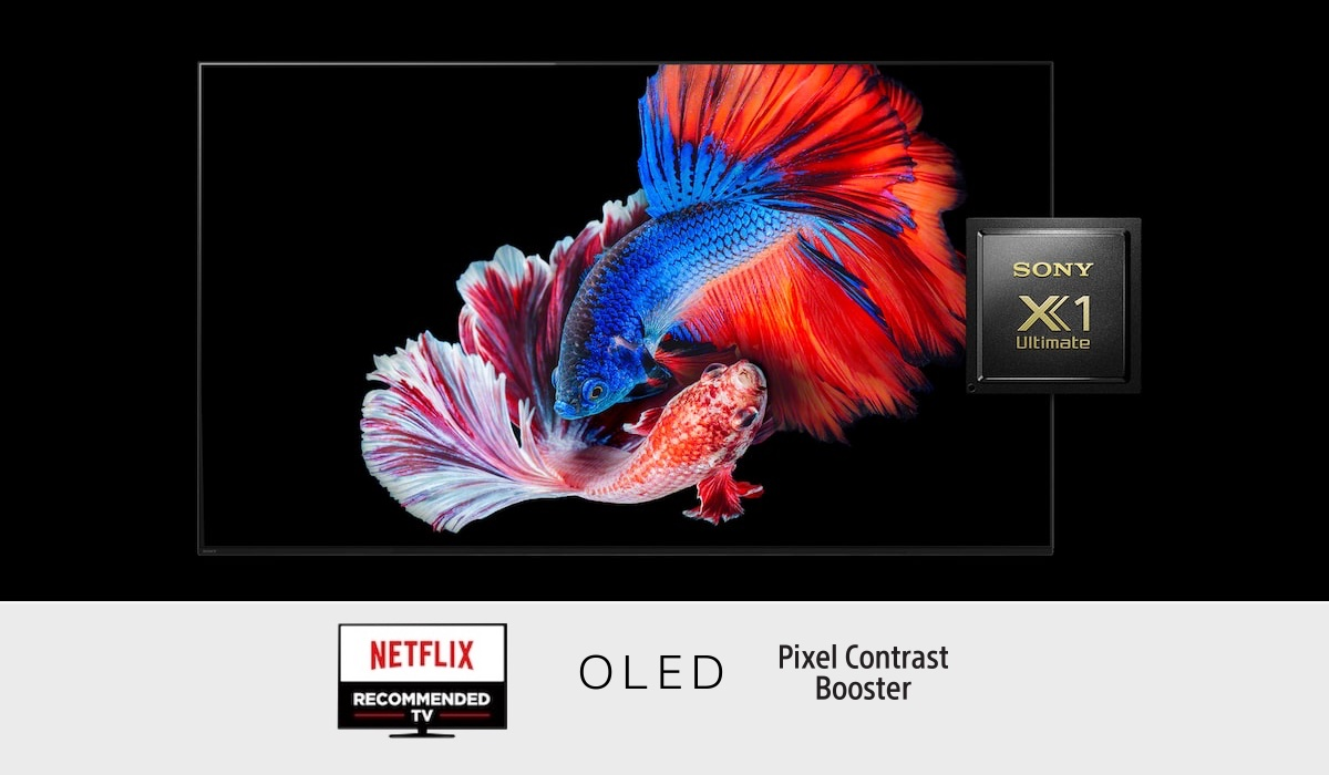 SHS Top Sony BRAVIA A9 Features (Explained)